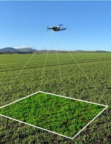 Drone-scouting-a-field-1-600x494__1_