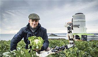 Ρόλο στη συγκομιδή λαχανικών βρίσκουν τα ρομπότ