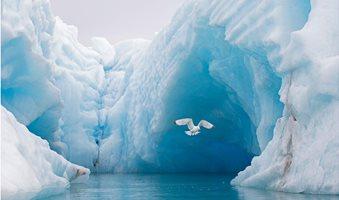 01_arctic_ocean_kxwd6b