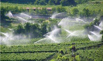 10_Sprinklers_in_vineyard_-_Trentino-Alto_Adige__Italy