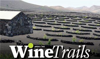Χτίζουν brand τα κρασιά της λάβας