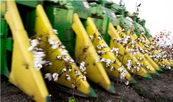 CottonHarvest