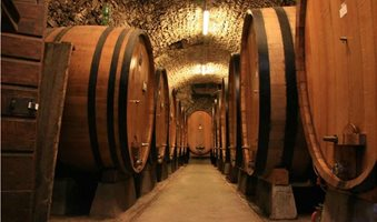 Large_botti_size_oak_barrels_in_Chianti