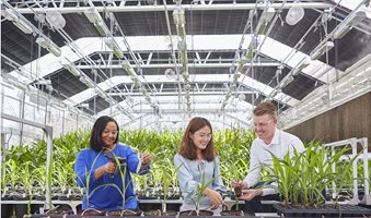 Researchers_examining_plants_in_a_greenhouse_6