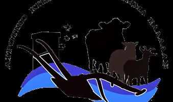 Xakkel-logo_png_pagespeed_ic_DHl6De9InV