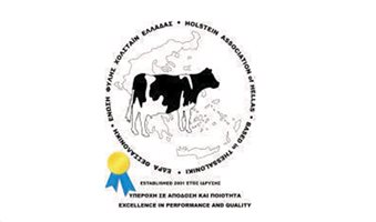 Holstein-new