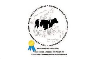 Holstein-new_3
