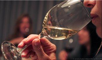 wine_drink