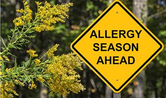 allergia-epoxi
