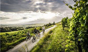 austria_wine_1