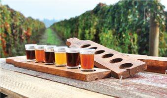 Οι 9 μπύρες που προκάλεσαν ατέρμονες συζητήσεις τη χρονιά που μας πέρασε