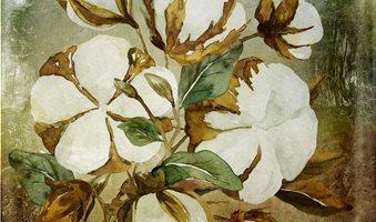 cottonpainting