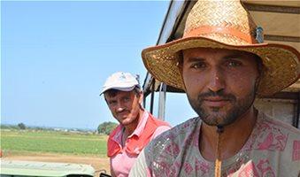 Με το κατώτατο μεροκάματο η εξαγορά χρόνου ασφάλισης για τους εργάτες γης