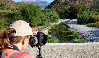 eleonas-birdwatching-agrotourismos-ecotourismos-ellada-kriti