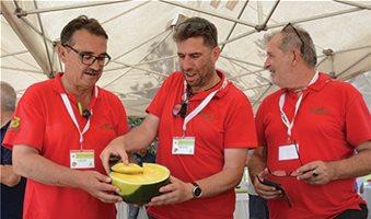 Στο DNA του έχει το κίτρινο χρώμα το καρπούζι σύμφωνα με έρευνα ανάπτυξης της Rijk Zwaan
