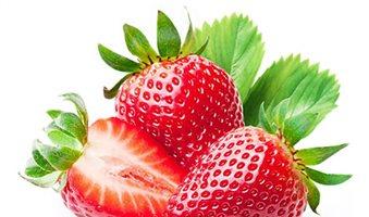 Δίπλα στη Fortuna και την Camarosa έρχεται η φράουλα Rociera