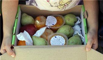 Με 10 νωπά προϊόντα η διανομή φρούτων για το σχολικό έτος 2014-2015