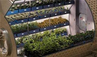 Η καλλιέργεια τροφίμων του Διαστήματος