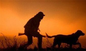 Τα ελάχιστα τέλη έκδοσης ειδικής άδειας κυνηγιού