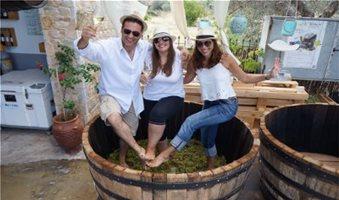 Σταφυλοπατήματα και οινοδημιουργήματα στο Lykos Winery στις 4 Σεπτεμβρίου