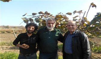 Μικροί, μεγάλοι μυήθηκαν στην καλλιέργεια ακτινιδίου στον Καταχά Πιερίας
