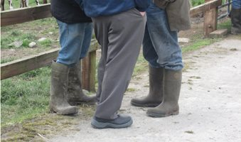 three-farmers-wellies-discussion-group-1024x768