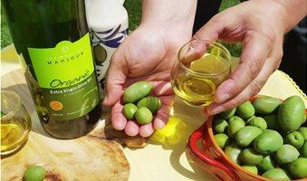 tinisia-olive-oil-3