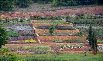Σεμινάρια για αρωματικά από τον Βαλκανικό Κήπο Κρουσσίων
