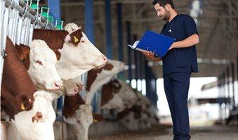 vet_farm