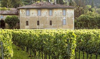 wineitaly2_3