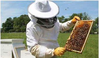 Σεμινάριο Εποπτών Μελισσοκομίας