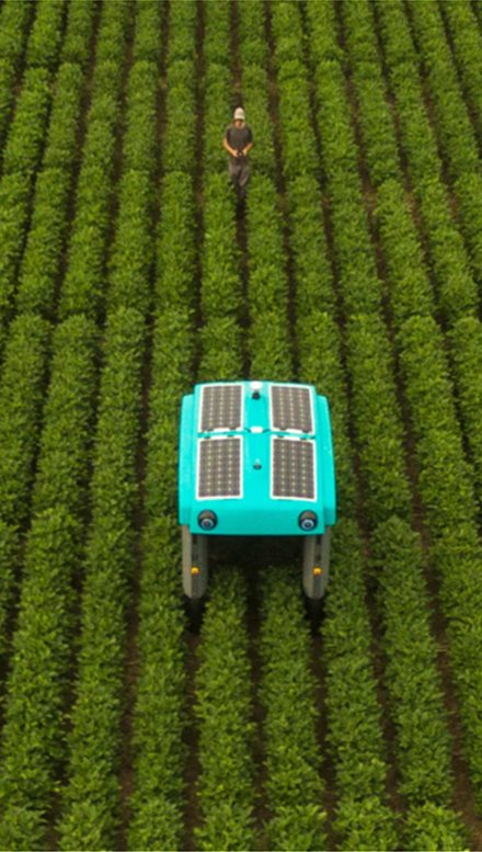 google-alphabet-building-farming-robot