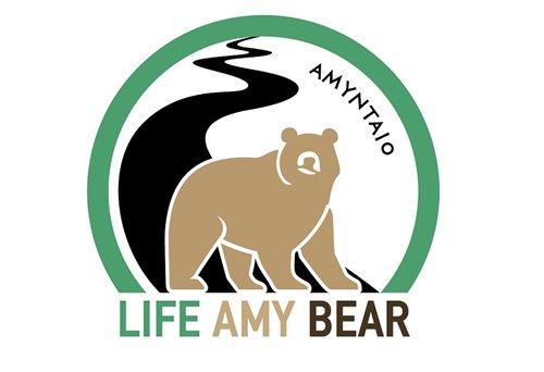 7636876c-life-amybear-logo_2