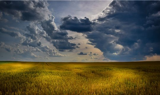 3072793-agriculture_cloudscape_cloudy-skies_countryside_crop_cropland_farm_farming_field_harvest_landscape_light-and-shadow_nature_outdoors_pasture_plains_rural_sky_sunlight_sunset_wheat_yellow
