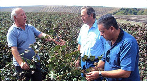 Προς άμεση εφαρµογή οι προπωλήσεις σύσπορου από αγρότες