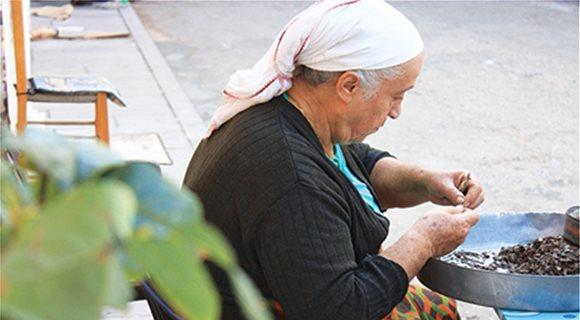 Χίος, εκεί που το δάκρυ ενός καρπού συνδέθηκε άρρηκτα με την ιστορία ενός νησιού
