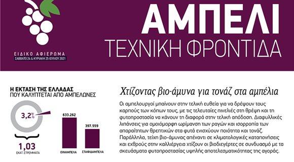 25-32_ampeli_819-1