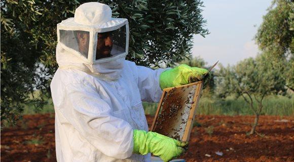 beekeepere