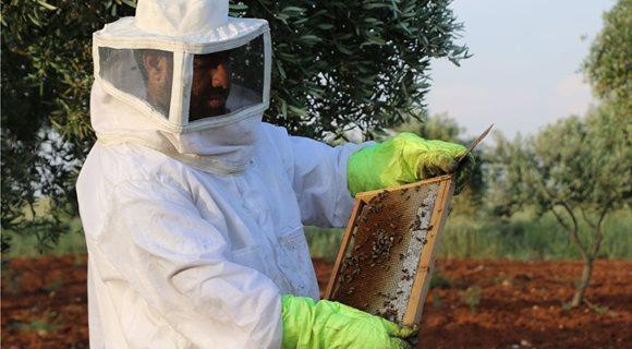 beekeepere_2
