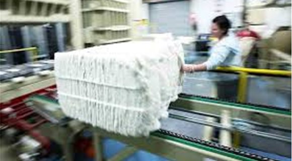 cotton_export