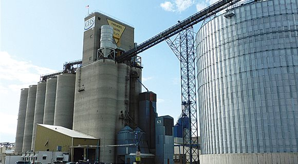 grain_elevator_wheat
