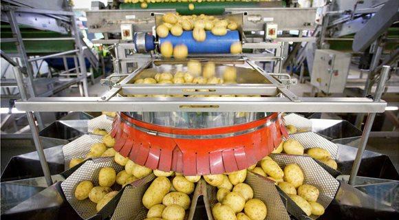 potatoprod