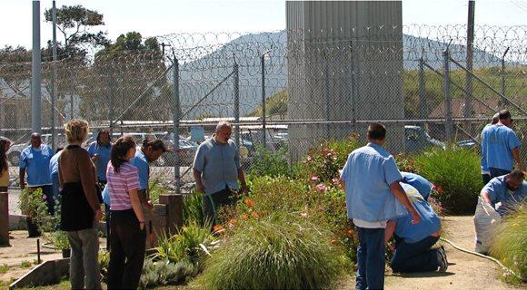 prisongarden