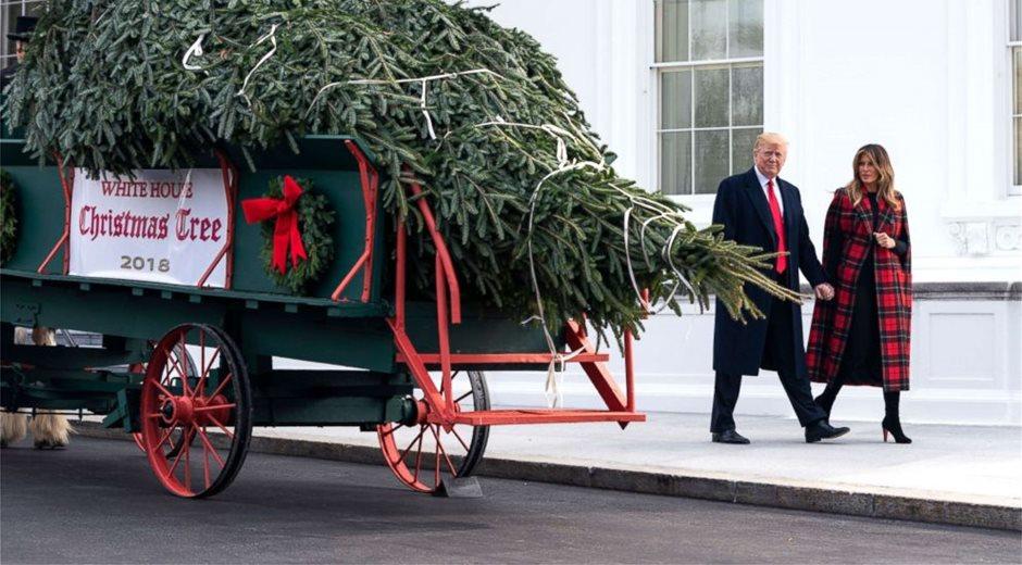 christmas-tree_trump