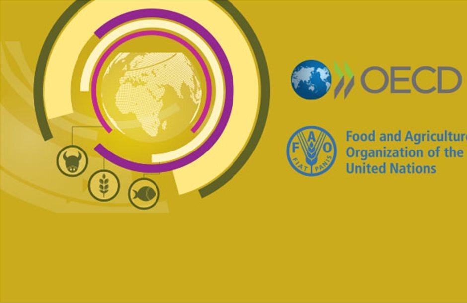 Περιορίζεται η ζήτηση στις αναπτυσσόμενες χώρες, πιέζονται οι τιμές στη γεωργία