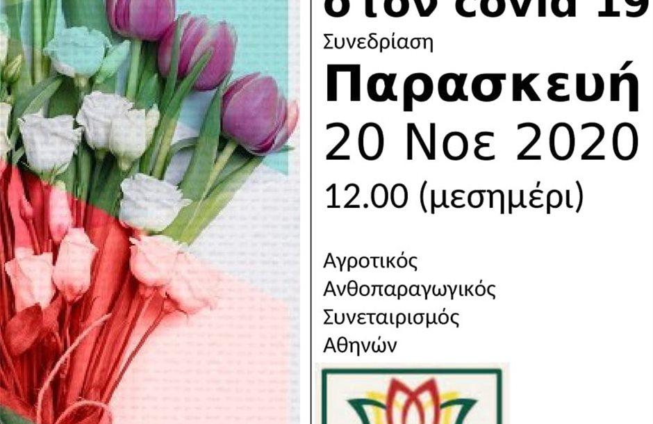 2020-11-20_ορθιο
