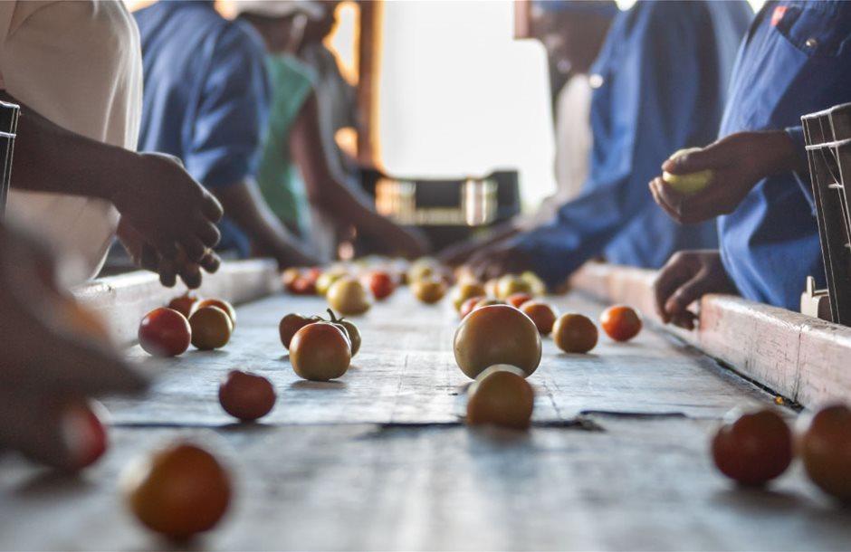 2021 06 07 Food security