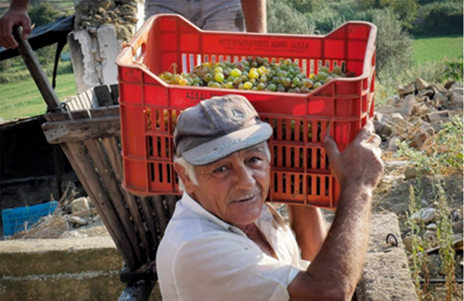 Προσαύξηση συντάξεων 0,075% σε ετεροεπαγγελματίες αγρότες