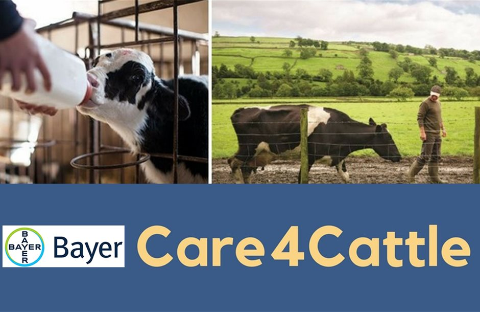 Bayer-Care-for-catle