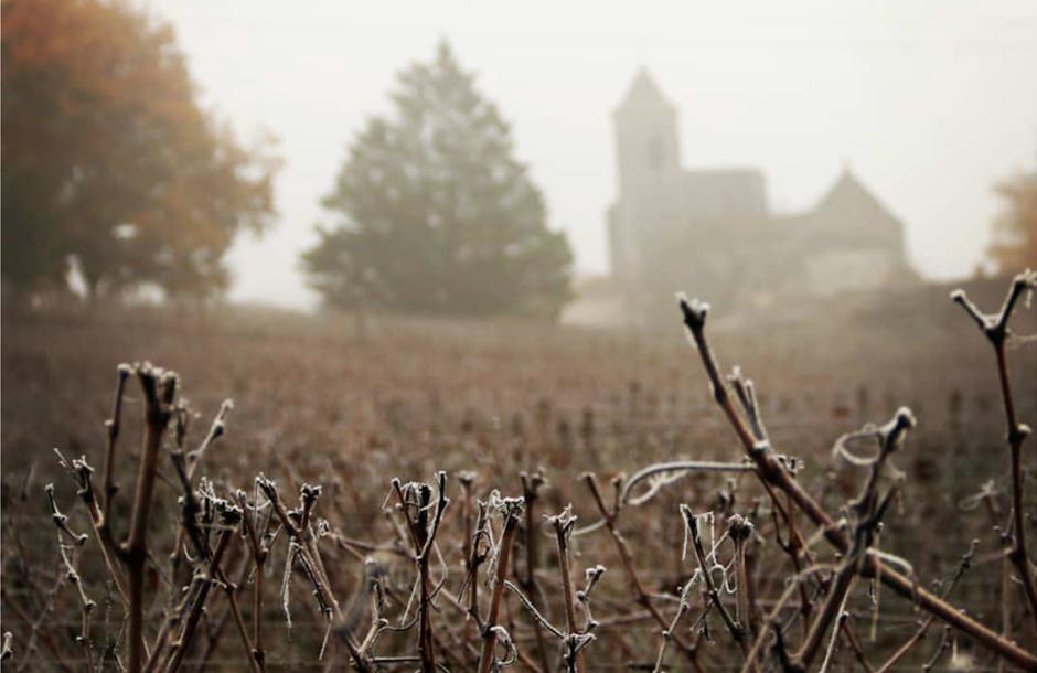 Bordeaux-in-winter_2